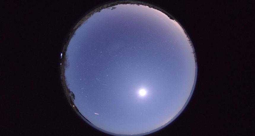 Phoenicid meteor shower