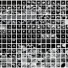 Rosetta composite