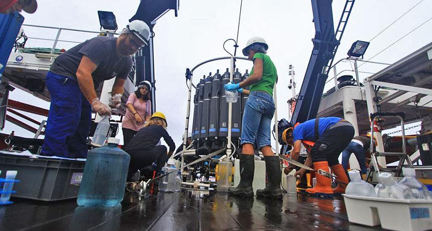 ocean water samples