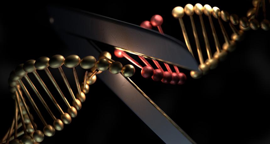 illustration of scissors cutting DNA