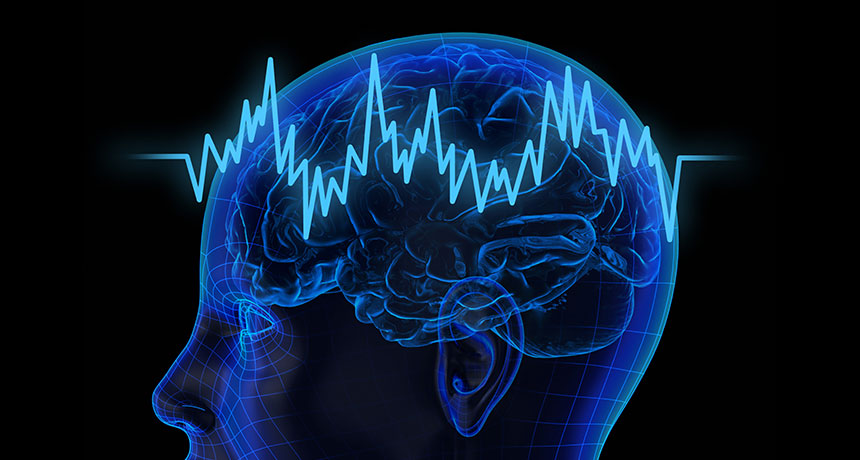 brain wave illustration