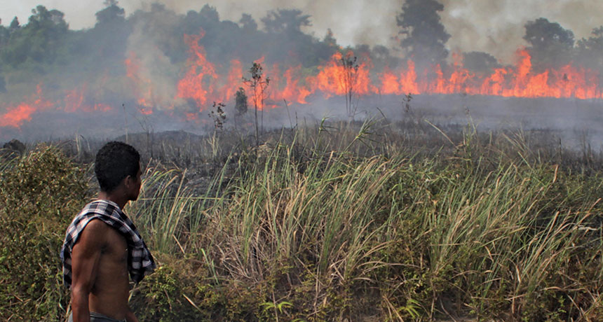 peatland fire in Indonesia