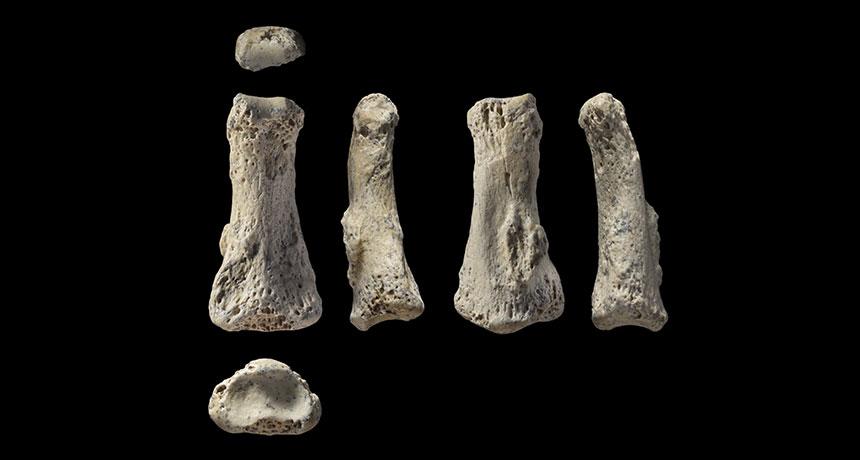 Finger fossil