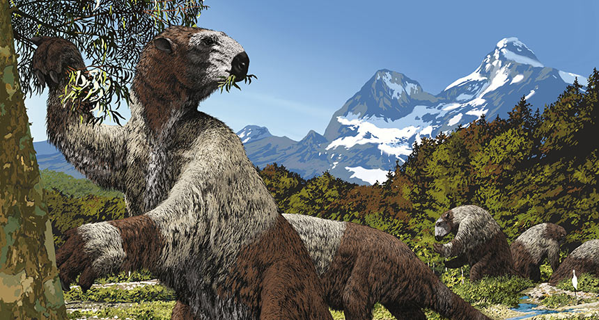 giant ground sloths, Megatherium