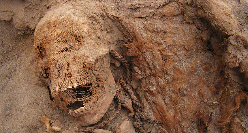fossilized child in Peru mass sacrifice site