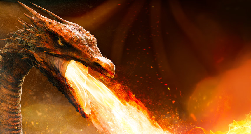 illustration of a dragon breathing fire