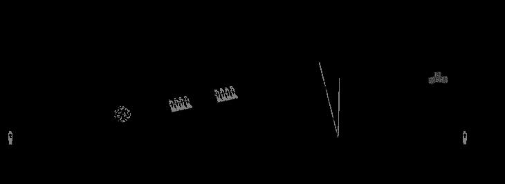 Rapa Nui islanders diagram