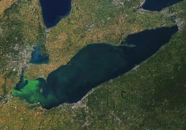toxic cyanobacteria bloom in Lake Erie