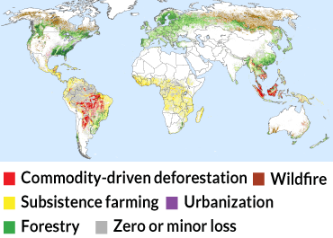 a map showing what is driving deforestation around the world