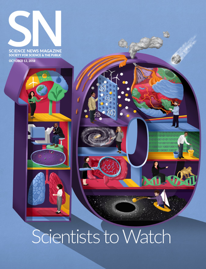 SN 10 cover