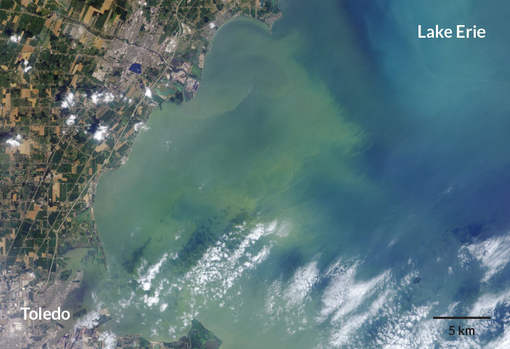 an aerial image of an algal bloom in Lake Erie from 2014