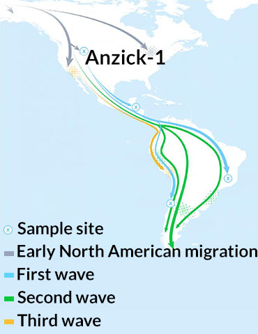 Ancient DNA suggests people settled South America in at