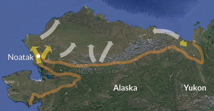 a map showing northward movement of beavers in Alaska