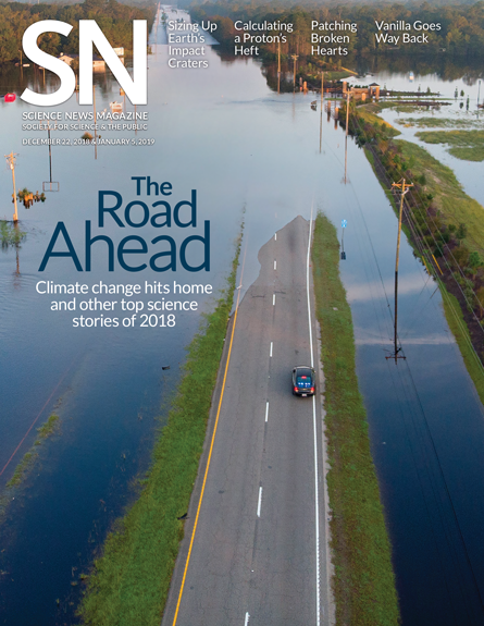cover of the December 12, 2018 and January 5, 2019 issue