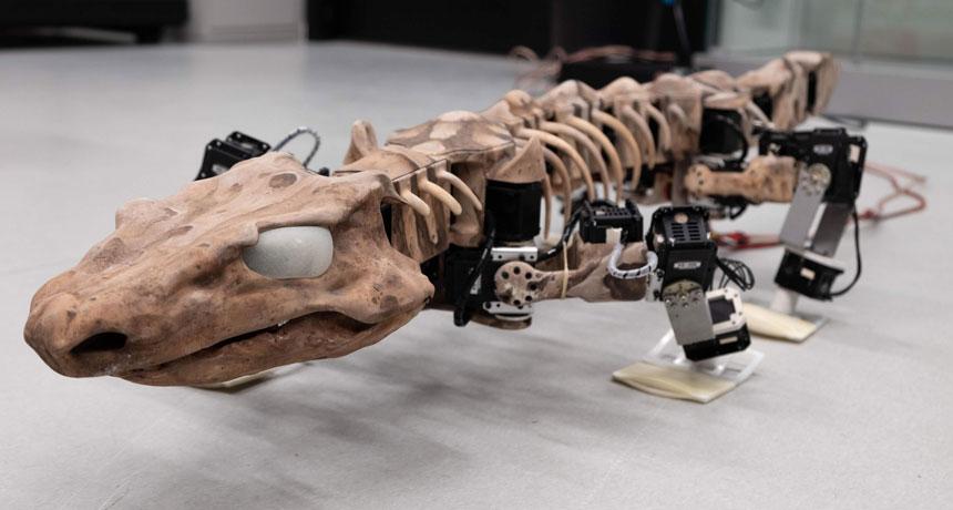 tetrapod robot