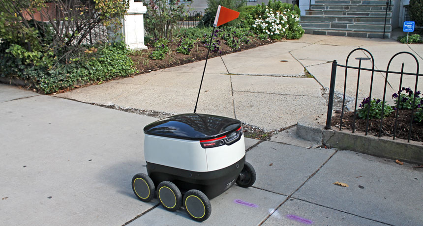 delivery bot