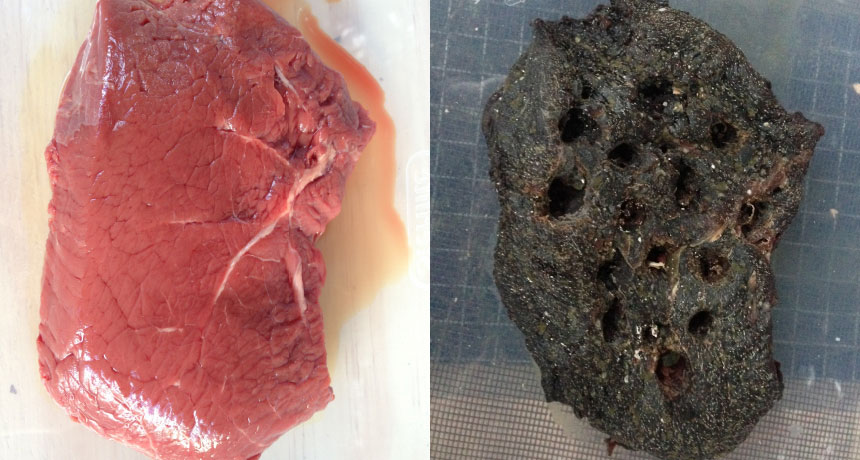 a composite photo showing steak before and after rotting