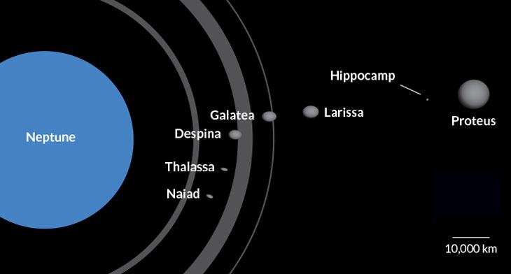 Neptune's seven inner moons
