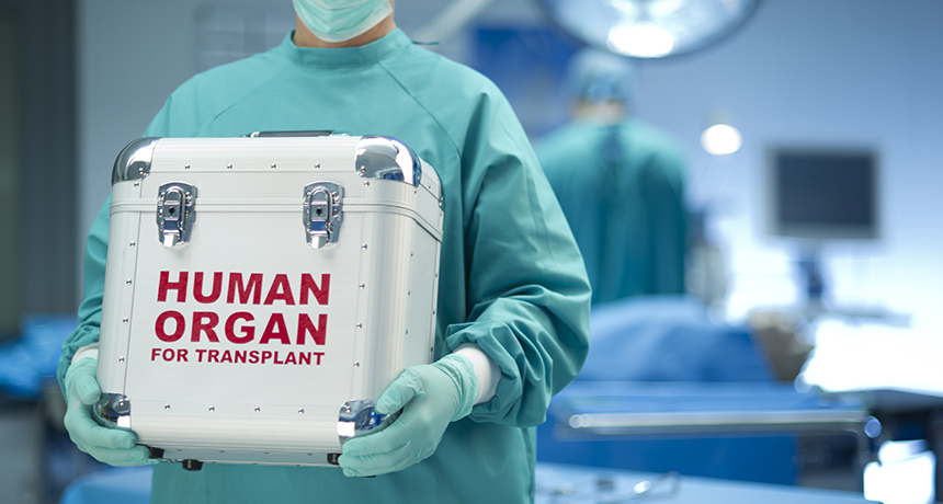 doctor carrying donor organ