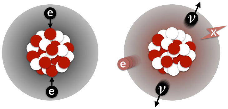 two-neutrino double electron capture