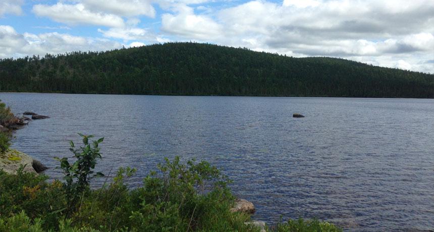 Sinclair Lake