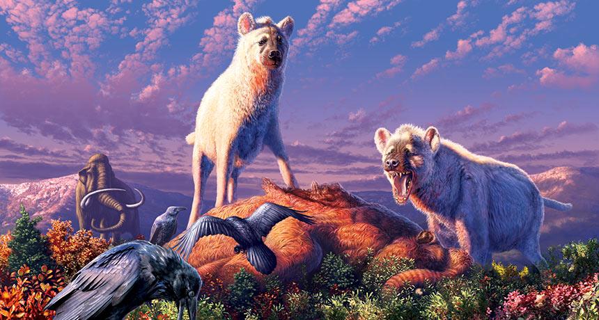 artist's rendering of Arctic hyenas