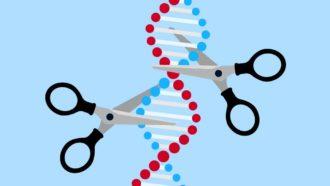 DNA scissors