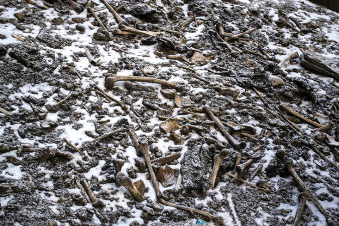 bones at Skeleton Lake