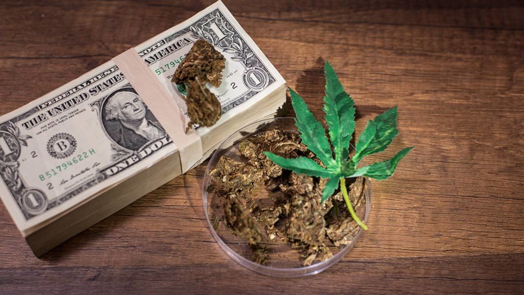 money and marijuana