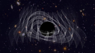gravitational-waves-from-a-ringing-black-hole-support-the-no-hair-theorem