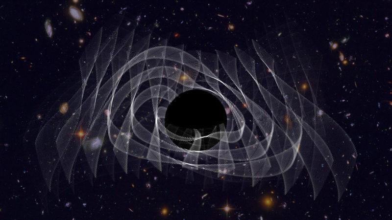 black hole rings