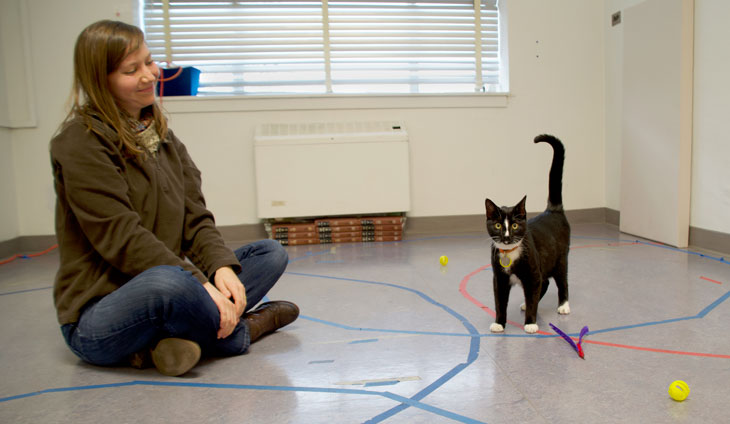 A woman and a cat in a research lab
