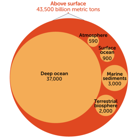 Total carbon on Earth surface graphic