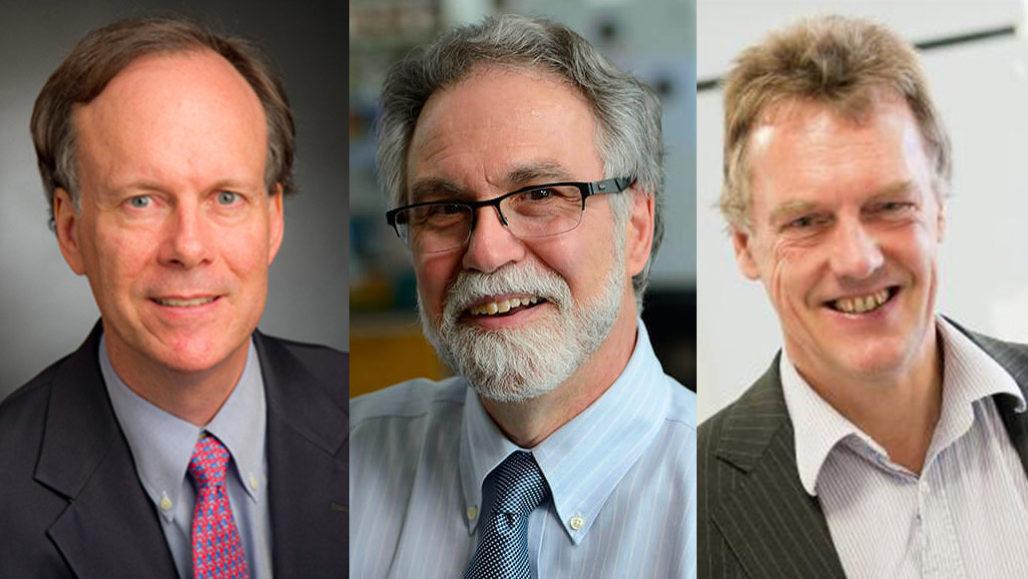 William Kaelin, Gregg Semenza and Peter Ratcliffe