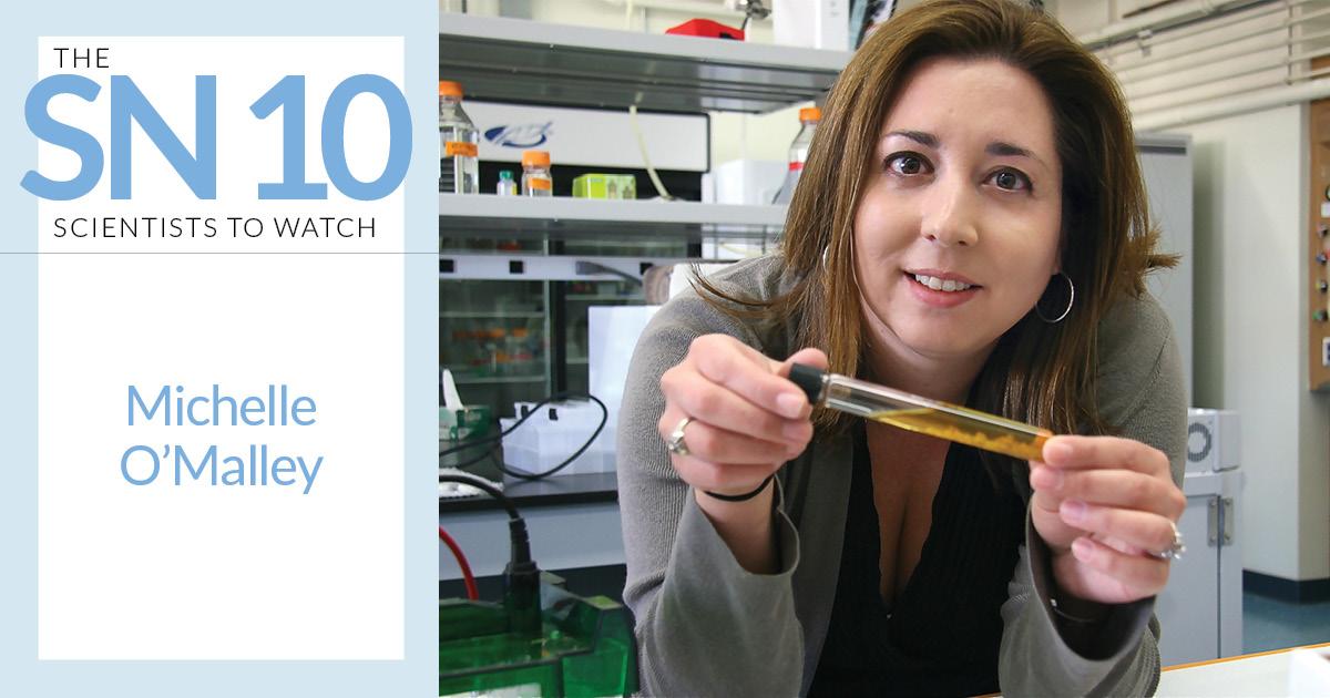 Michelle O'Malley Seeks Greener Chemistry Through Elusive