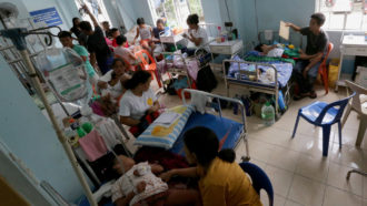 Dengue ward at a hospital in the Philippines