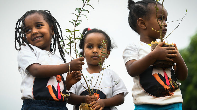 kids holding trees to plant