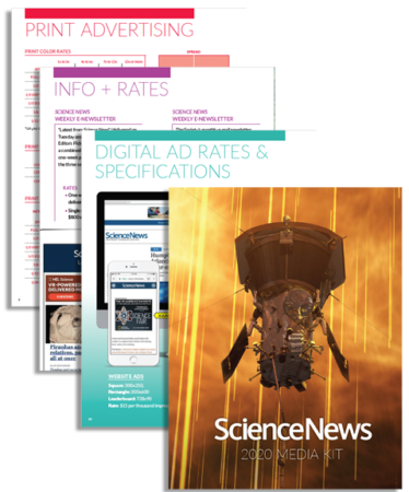 Top 50 News Magazine WordPress Themes 2020 - Colorlib | 450x374