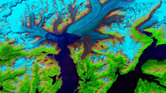 see-how-an-alaskan-glacier-has-shrunk-over-time