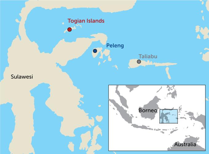 Wallacea islands map