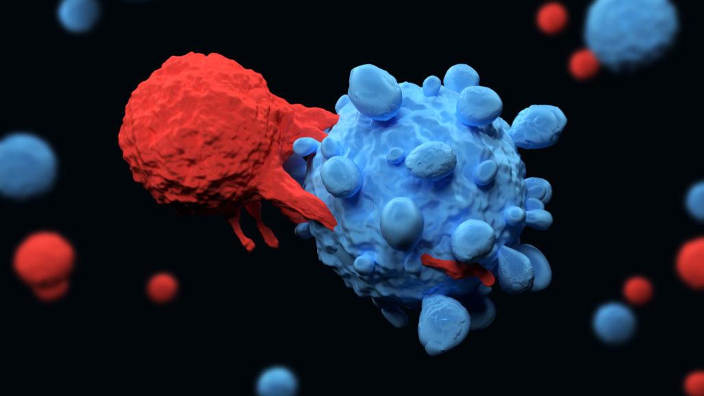 CAR-T cells