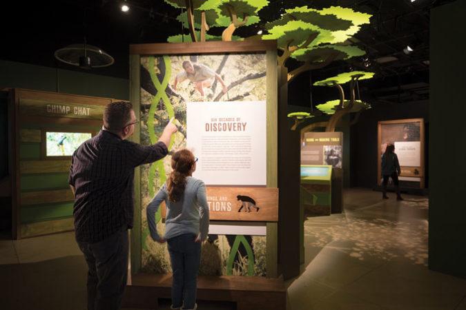 National Geographic Jane Goodall exhibit
