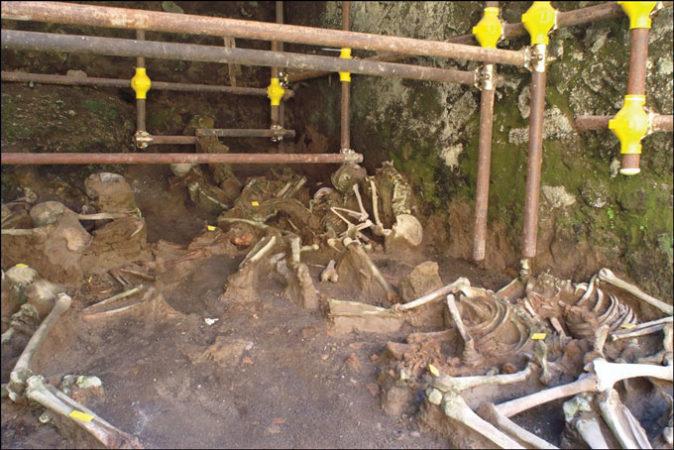 Vesuvius skeletons