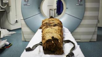 mummy in CT scanner