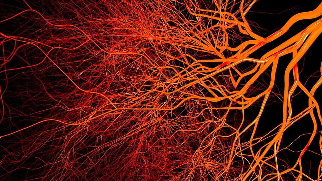 Injecting nanoparticles in the blood curbed brain swelling in mice