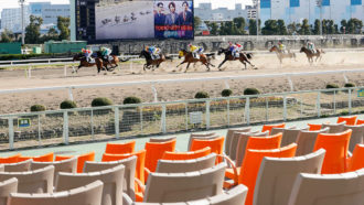 central government-sanctioned horse race in Japan