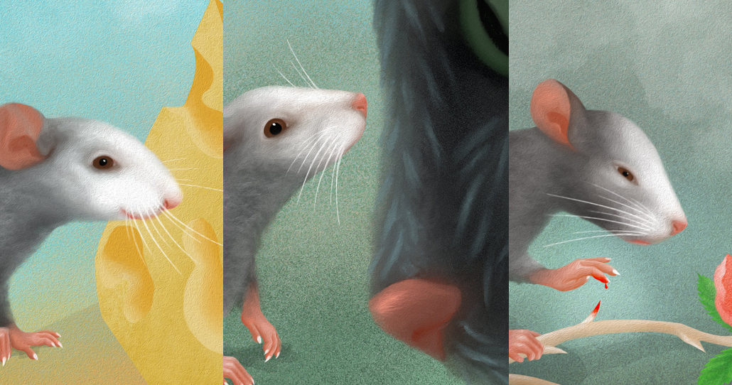 Mouse expression illustration