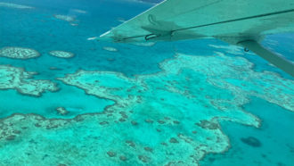 Great Barrier Reef aerial survey