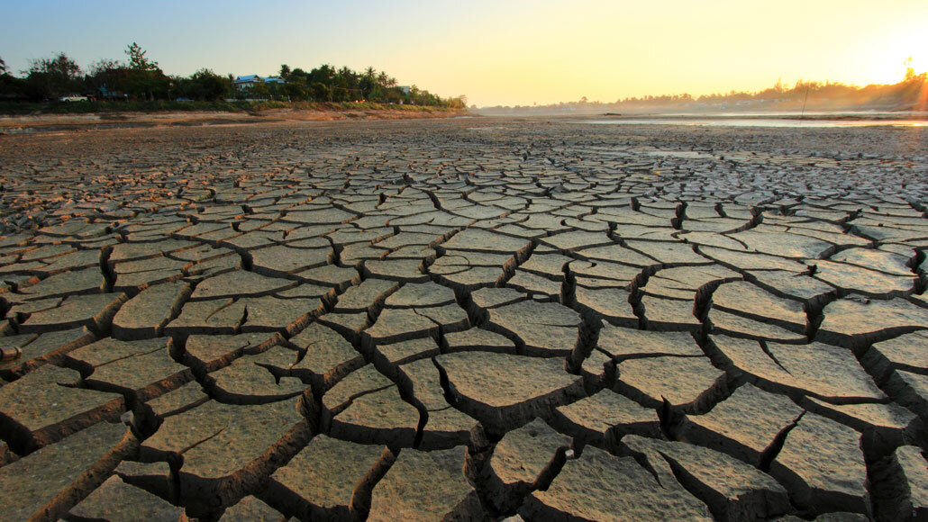 Climate change made a U.S. drought one of the worst in 1,200 years |  Science News