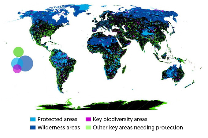 Global map of protected areas